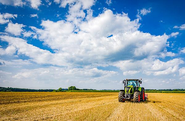 Agrarfotograf-Landwirtschaftsfotograf-Bremen_Momentkonserve